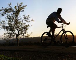 Mountain Biking In Sedgefield